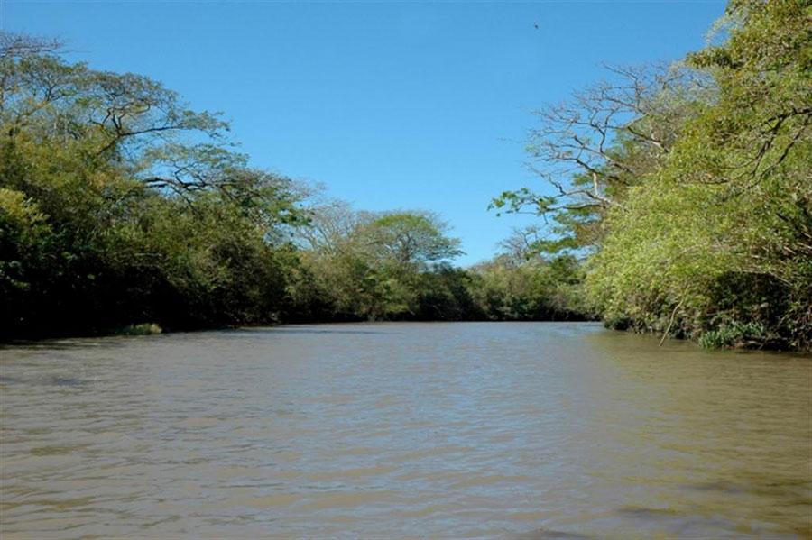 El río Tempisque a su paso por Palo Verde