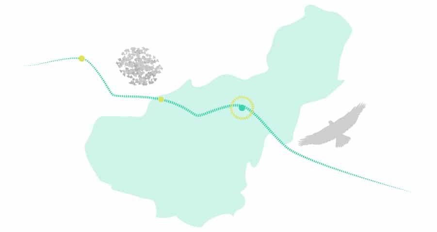 Barranquismo en el río Verde: flora y fauna para observar